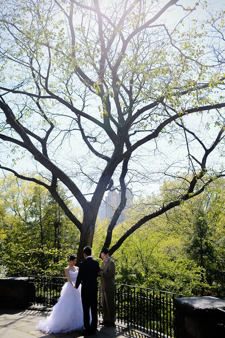 shakespeare-garden-spring-wedding