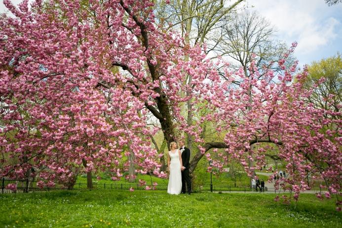 may-wedding-at-ladies-pavilion (28)