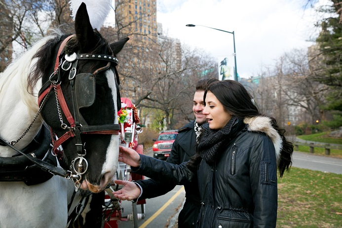 surprise-proposal-in-central-park (12)
