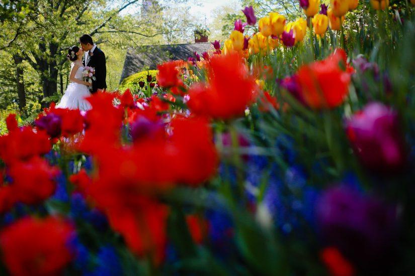 acentralparkwedding-shakespeare-garden (8)