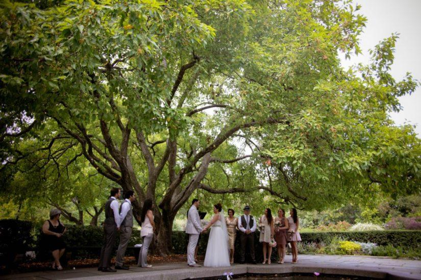 conservatory-garden-south-garden-wedding