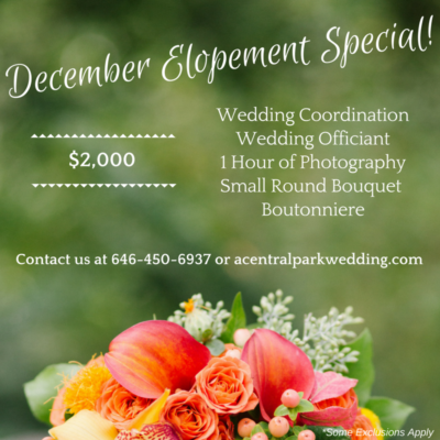 December Elopement Special